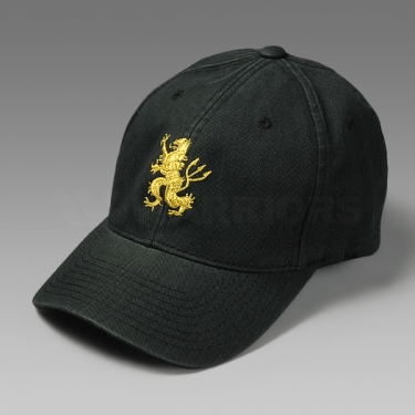WARRIORS DEVGRU GOLD TEAM LION キャップ